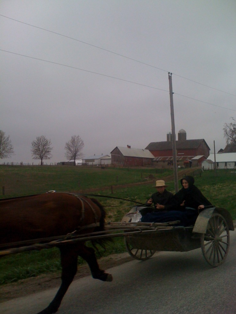 Mennonite carriage shot from the van on the way to the race.