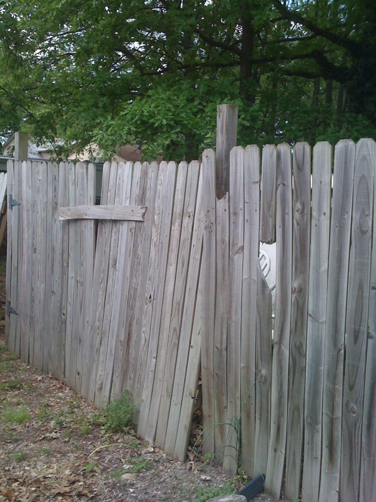 Original rickety fence.