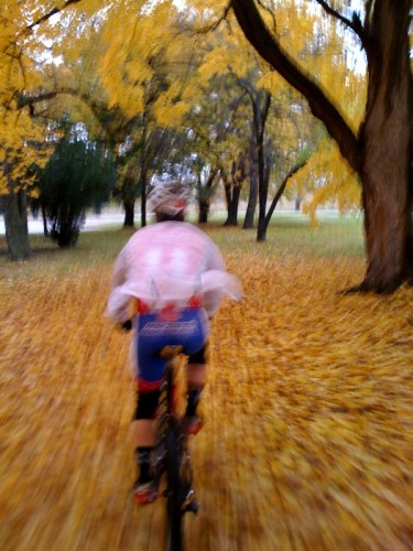 Bill riding through maple leaf carpet.