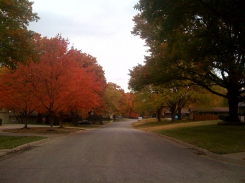 Looking down my street on the way back from a ride.  The leaves are beautiful, but treacherous when they're wet.
