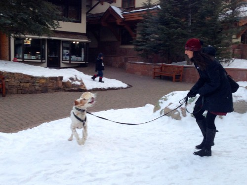 Trudi and Bromont playing in downtown Vail.
