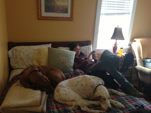 Trudi, Jack and Bromont hanging out before leaving yesterday.