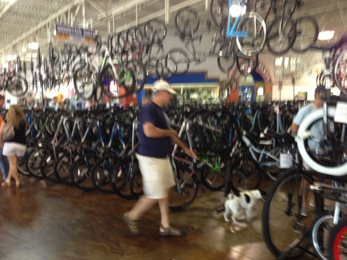 Richardson Bike Mart is dog friendly.  You can't beat that.