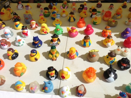 Rubber Duckie race table at the Frisco Farmer's market.