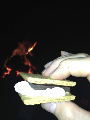Trudi was making s'mores.