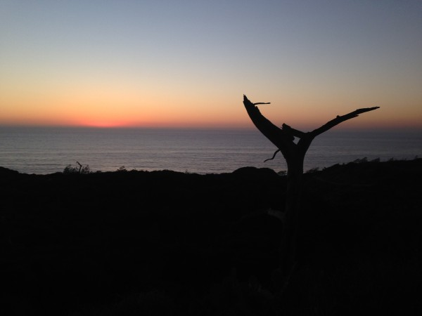 From the top of Torrey Pines at dusk.
