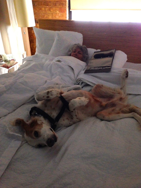 Bromont keeping Sue's mom company during the ice storm.