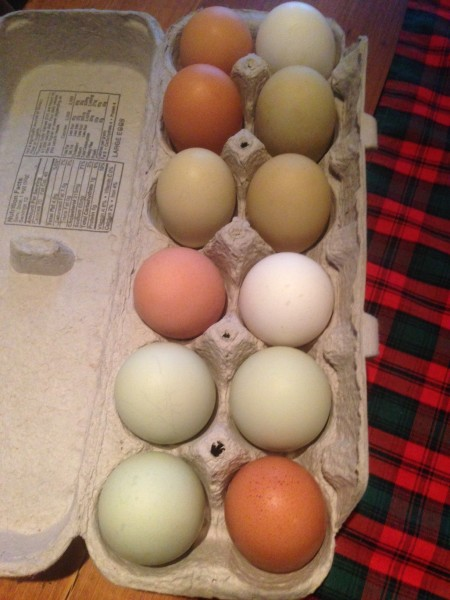 We ran out of eggs, so Dennis called our friend George, who just lives through the woods, and he brought over 2 dozen eggs his chickens laid.