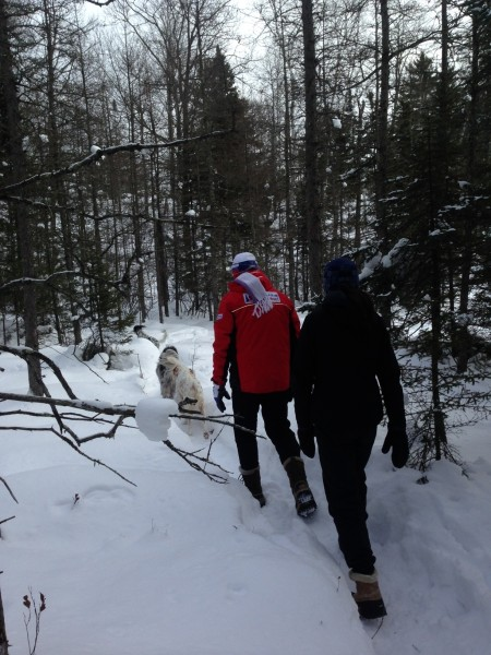 The trails are so frozen hard that you don't even need to use snowshoes where we've been before.