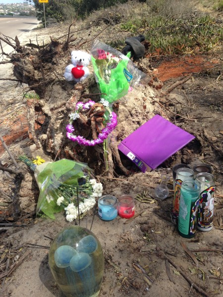 I saw this cool shrine on La Costa Blvd. last weekend.  I like to stop on look at these.  The glass thing, with the jellyfish look, seems pretty expensive.  There is a pair of socks on the top right, plus the teddy bear.  I wonder who this is for?