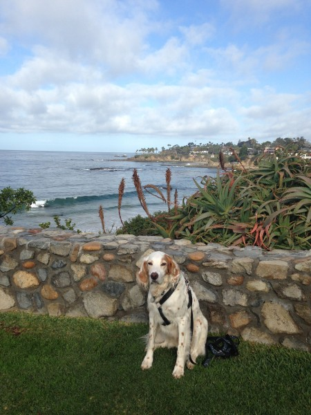 Bromont hanging in Laguna Beach.