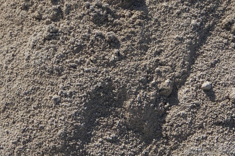 Concrete Vs Cement Vs Mortar : Cement powder steve tilford