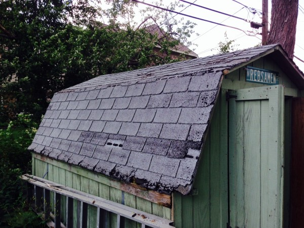 Original 40 year old shingles.
