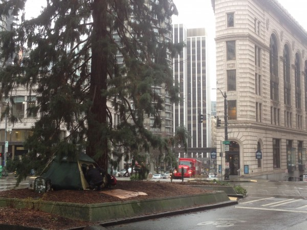 Before that, we did a 7 miles walk around town.  I didn't start Strava on my phone until have way in and had 3.something miles.  This guy had his tent set up really in the middle of the street.  The building behind the tree is super cool.