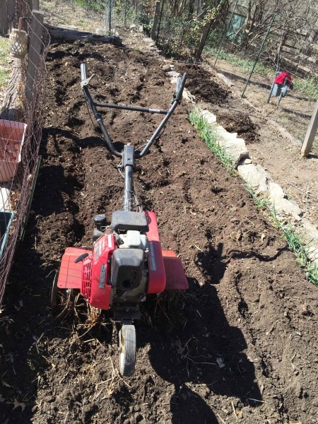 I sometimes just dig in the compost, but got out the rototiller yesterday.