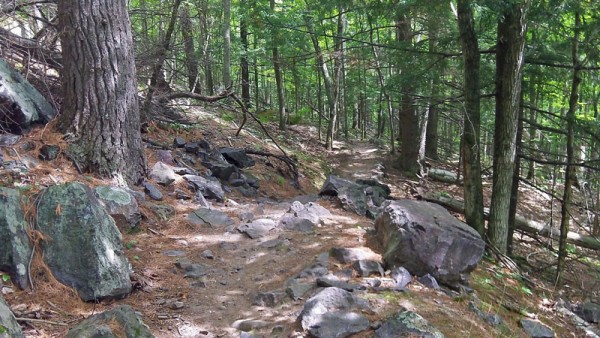 There was some stuff like this, but most of the real technical sections were chutes of loose rock with small drop offs.