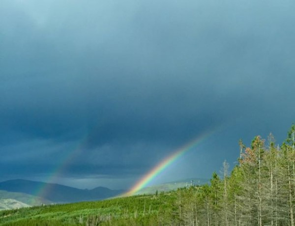 Yesterday there was a huge storm in the afternoon.  I saw a beautiful double rainbow.  I took it as a good luck sign.