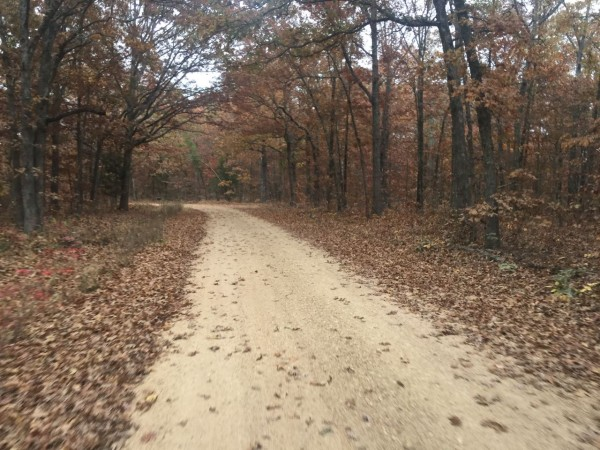 The whole course is going to be deep covered in leaves.