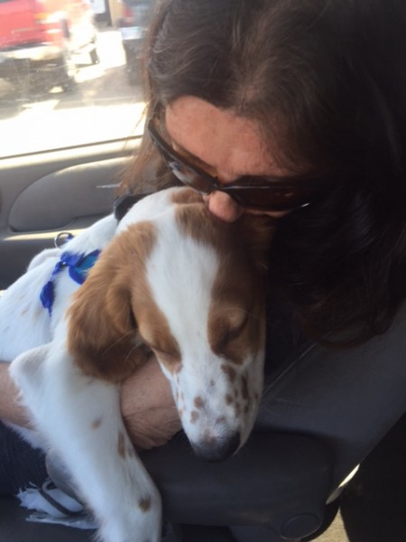 Trudi holding Tucker on the way to the airport.