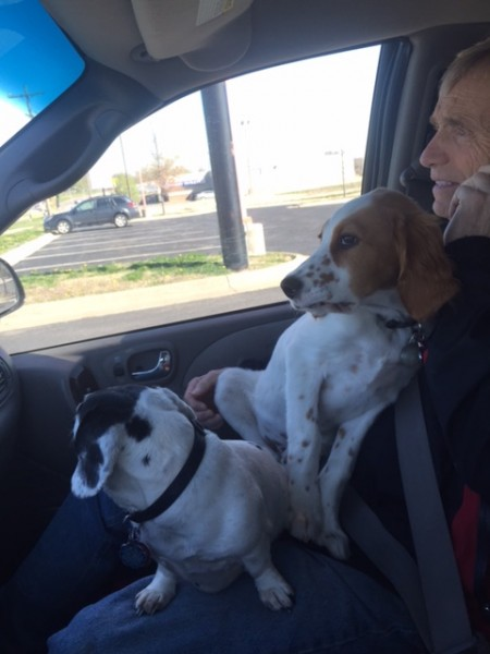 Frankie and Tucker on Dennis' lap heading over to the trails to walk.