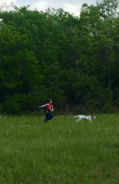 Finn, Shadd Smith's son, was dog sitting again  yesterday.  I saw Tucker pulling him all over.