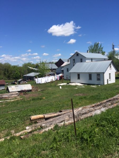 An Amish farm. Lots of dying sheets.