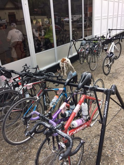 Tucker hanging out with the bicycles after the Copper Triangle ride.