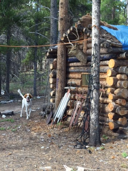 This was outside of Leadville.  I was calling Tucker, who was running around here.  Notice the bear head on the top of the shack.  When I saw that, I started worrying that both Tucker and I were in the wrong place.