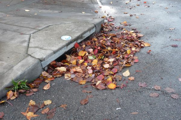 Nothing like the storm sewers being clogged. If you have a storm sewer in front of your house you need to keep it clear.